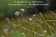 """""""Ik zal niet sterven, maar leven; en ik zal de werken des HEEREN vertellen""""   Psalm 118:17       #psalm118"""
