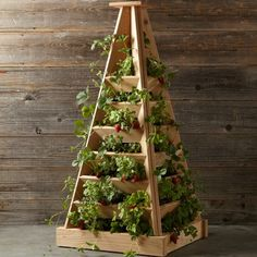 Tower garden ideas are great for growing veggies and herbs or as decoration in your yard. Find the best tower ideas garden on this list! Hydroponic Gardening, Organic Gardening, Container Gardening, Gardening Tips, Indoor Gardening, Balcony Gardening, Vertical Vegetable Gardens, Vegetable Gardening, Cedar Garden