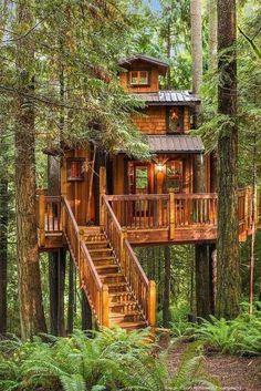 Haben Sie zu Hause einen großen Garten mit Bäumen? Dann bauen Sie natürlich ein Baumhaus für Ihre Kinder! Die 10 lustigsten Baumhäuser!