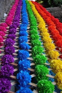Tissue flowers on a really nice bright colours lattice. This would make a beautiful backdrop Love Rainbow, Rainbow Flowers, Taste The Rainbow, Over The Rainbow, Rainbow Colors, Rainbow Stuff, World Of Color, Color Of Life, All The Colors