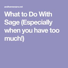 What to Do With Sage (Especially when you have too much!)