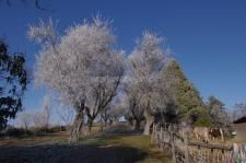 Workaway in . Help with organic agrotourism in Ozzano dell'Emilia Country Roads, Organic, Spaces