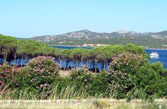 #Sardinia – Crystal Seawater and Four Heads – travel potpourri http://www.travelpotpourri.net/en/2016/08/18/sardinia-ciste-more-a-styri-hlavy/