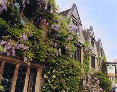The stunning Bay Tree Hotel