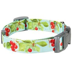 Blueberry Pet 3/8-Inch The Cherry Garden Designer Basic Polyester Nylon Dog Collar for Puppy, X-Small, Turquoise - http://www.thepuppy.org/blueberry-pet-38-inch-the-cherry-garden-designer-basic-polyester-nylon-dog-collar-for-puppy-x-small-turquoise/