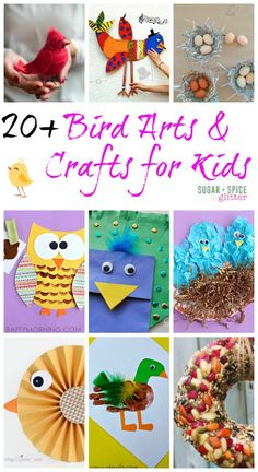 I LOVE bird arts and crafts! So do the kids. Fly on in and check out this awesome collection of bird arts and crafts that are perfect for spring!