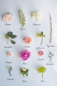 Blog | Flowerona - Part 5