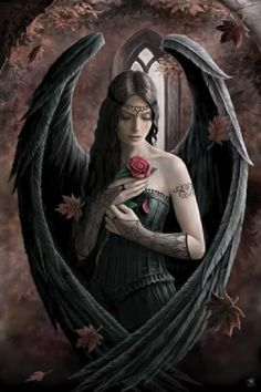 Anne Stokes Fantasy Poster: This beautiful poster from acclaimed fantasy artist Anne Stokes depicts a reflective angel holding a rose with black feathered wings forming a protective heart around her. Stokes has said that this dreamy image symbolises the passing of time which is shown by the petals falling from the rose and the leaves swirling around the angel. With subtle rustic colouring and a gothic theme this gorgeous poster is the perfect item for any fantasy art fan.