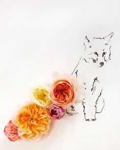 flowers and fox by kari herer