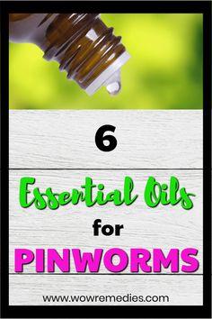 Best 25 Pinworms In Kids Ideas On Pinterest Threadworm