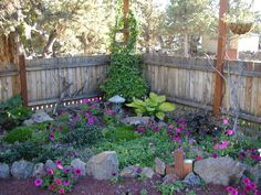 shade gardens | corner shade garden in its second spring 2007 the petunias are all ...