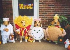 The Funniest Pet Halloween Costumes Ever: 2011 Edition! (PHOTOS)