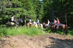 Наши гости на конной прогулке  #прогулка#дурмитор#черногория#горы#балканы#кони#туризм#лошади#скалолазание#долгожители#горцы#отдых#поход#горы#путешествие#путешествия#путешествуем#путешествуй#путешествовать #путешествую#турист#туристы#поездка#отпуск#отпуск2016#отдых #отдыхаем#заграница#тур#путь