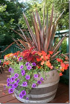 The spiky Phormium/ Flax Grass makes a vivid centerpiece, then she used red Coleus and orange Impatiens to pick up on the Flax's colored stripes. Last, she used some purple trailing Petunias to cool down the combination and spill over the edges.