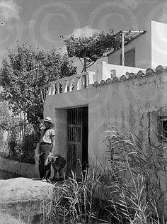 Ses Feixes - Foto: Bartomeu Amengual