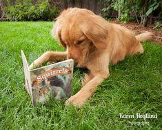 summer reading program for dogs :)