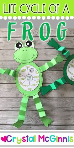 Frog Crafts Preschool, Frog Activities, Kindergarten Activities, Sequencing Activities, Tadpole To Frog, Life Cycle Craft, Lifecycle Of A Frog, Frog Illustration, Frog Drawing