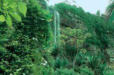 Cafundó Falls - Ubajara National Park - Ceará Rio Grande Do Norte, National Parks, Landscape, Bahia, Weather, Viajes, Scenery, Corner Landscaping