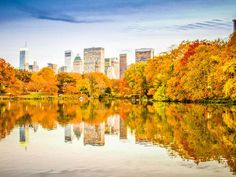 Fall in New York City reflects on the water in Central Park ~ Photo by.Amanda Fehring/Your Take© >> Park Photos, You Take, Central Park, Mother Nature, New York City, Cool Photos, Landscape, Places, Pictures