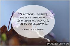 Żeby zdobyć wiedzę, trzeba studiować... #Savant-Marilyn-Vos,  #Mądrość-i-wiedza, #Myślenie-i-myśli