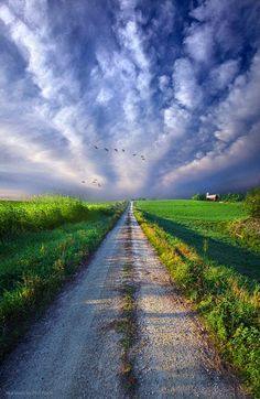 Take A Right At The Barn Art Print by Phil Koch. All prints are professionally printed, packaged, and shipped within 3 - 4 business days. Choose from multiple sizes and hundreds of frame and mat options. Beautiful Roads, Beautiful Landscapes, Beautiful World, Beautiful Places, Photo Backgrounds, Background Images, Landscape Photography, Nature Photography, Landscape Photos