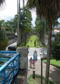 Joinville - Fotos - UOL Viagem