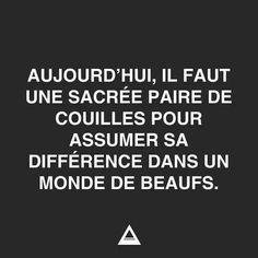 """""""Aujourd'hui, il faut une sacrée paire de couilles pour assumer sa différence dans un monde de beaufs !"""" #inspiration #quotes #ydem"""