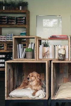 Que tal essa estante de pallets que se adaptou para ter um cantinho para o pet…
