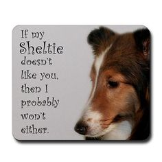 Too true...you may be able to fool me, but not them.  They are loving & sweet dogs by nature, but far from stupid.
