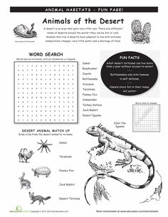 Worksheets: Animal Habitats: Deserts