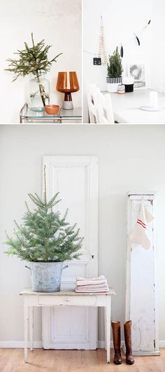 Trend to try: mini (unadorned) Christmas trees