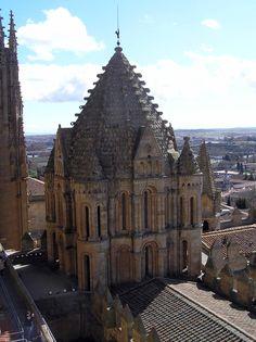 Torre del Gallo de la Catedral Vieja de Salamanca, Portal Fuenterrebollo