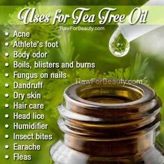 Remedies of tea tree oil