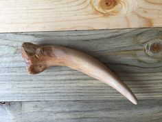 This is a re-creation of the basilisk fang from Harry Potter and the chamber of secrets you can order it with or without the blood stain from