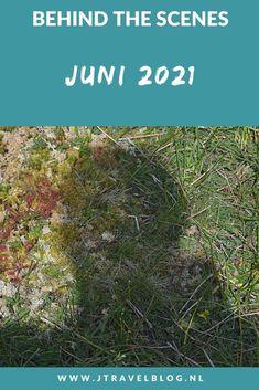In juni 2021 liep ik 2 etappes van het Westerborkpad van Station Naarden-Bussum via Station Hilversum naar Station Hilversum Sportpark en ik maakte een mooie wandeling in de Amsterdamse Waterleidingduinen. Meer hier over lees je in dit maandoverzicht. #maandoverzicht #juni2021 #westerborkpad #amsterdamsewaterleidingduinen #wandelen #jtravel #jtravelblog Behind The Scenes, Juni, Blog, Blogging