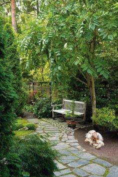 What You Can Do To Improve Your Landscaping using Garden Arbor Everyone that owns a home wants to take pride in it.