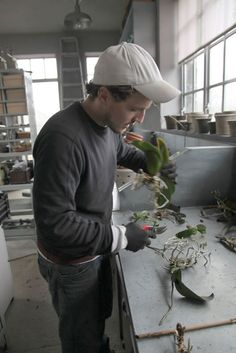 After removing the orchid from its pot, Ryan loosens and breaks apart all the old potting medium, exposing the orchid roots. Orchid Planters, Orchids Garden, Amazing Gardens, Beautiful Gardens, Indoor Garden, Outdoor Gardens, Organic Gardening, Gardening Tips, Orchid Roots