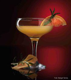 Vodka, Drinks, Tableware, Beverages, Drinking, Dinnerware, Tablewares, Drink, Dishes