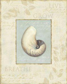 www.facebook.com/MysticMermaidCove www.mysticmermaid.com.au
