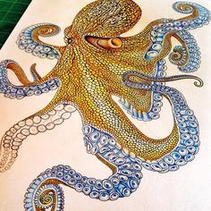 7 down, 1 tentacle to go! The next post will be the finished piece. Octopus Drawing, Octopus Painting, Octopus Art, Octopus Colors, Pencil Drawings, Art Drawings, Octopus Tattoos, Ocean Tattoos, Especie Animal