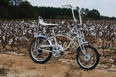1970 Schwinn Cotton Picker - Original, unrestored bike in the land of cotton--Dixie! This Cotton Picker, one of the least common of the Schwinn muscle-bikes, is equipped with the Vintage Cycles, Vintage Bikes, Vintage Motorcycles, Old Bicycle, Old Bikes, Bmx, Raleigh Chopper, Lowrider Bicycle, Chopper Bike