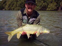 Largemouth yellowfish, Vaalriver, Christiana, North West province , South Africa Bass Fishing, Fishing Boats, North West Province, Fly Guy, South Africa, Fishing