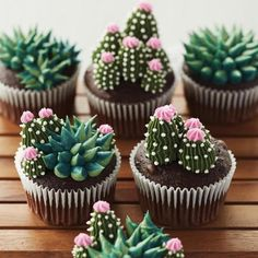 These succulent cupcakes are almost *too* cute to eat. 🌵😍 These succulent cupcakes are almost *too* cute to eat. 🌵😍 These succulent cupcakes are almost *too* cute to eat…. Pretty Cakes, Cute Cakes, Beautiful Cakes, Amazing Cakes, Yummy Cakes, Cupcakes Succulents, Kaktus Cupcakes, Edible Succulents, Indoor Succulents