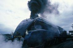 LNER steam locomotive 'Mallard' Pacific class, No 1938 -National Railway Museum Train Museum, British National, National Railway Museum, Abandoned Train, Road Train, Train Art, British Rail, Train Engines, Science Museum