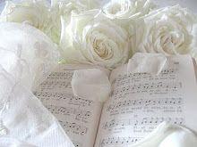 Beautiful white roses...