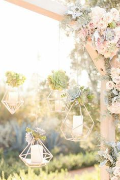 Succulents will hang from the pergola's on each side of the aisle