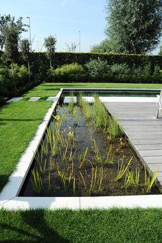 Moderne tuin met zwemvijver   Vereecke Lieven Garden Pool, Water Garden, Modern Landscaping, Backyard Landscaping, Landscape Architecture, Landscape Design, House Outside Design, Natural Swimming Ponds, Pond Design