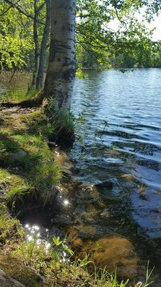 at the lake Beautiful World, Beautiful Places, Beautiful Pictures, Landscape Photos, Landscape Paintings, Beau Rivage, Nature Pictures, Amazing Nature, Beautiful Landscapes