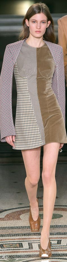 Fall 2017 RTW Stella McCartney- would love something like this in a longer version