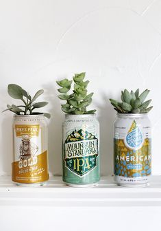 DIY beer can planters - DIY Let& Upcycling! - DIY beer can planters – DIY let& upcycling! Diy Projects For Couples, Ostern Party, Suncatcher, Beer Bottle Caps, Father's Day Diy, Beer Signs, Coffee Signs, Diy Planters, Vegetable Planters
